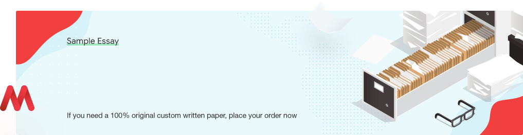 Custom «General Introduction to the Case» Essay Paper